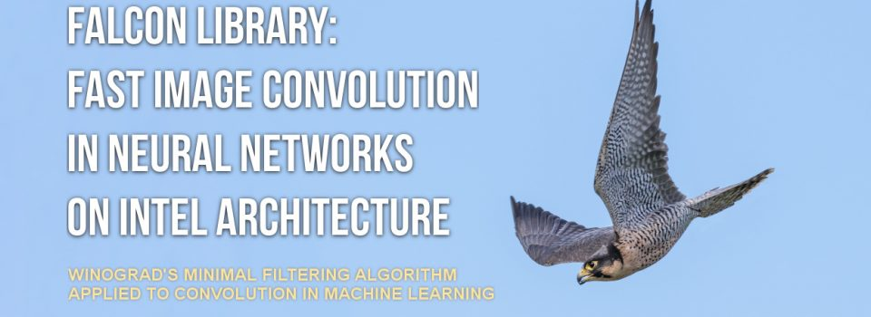FALCON Library: Fast Image Convolution in Neural Networks on